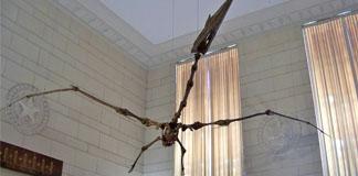 پرواز کووتزال کوتلوس Quetzalcoatlus