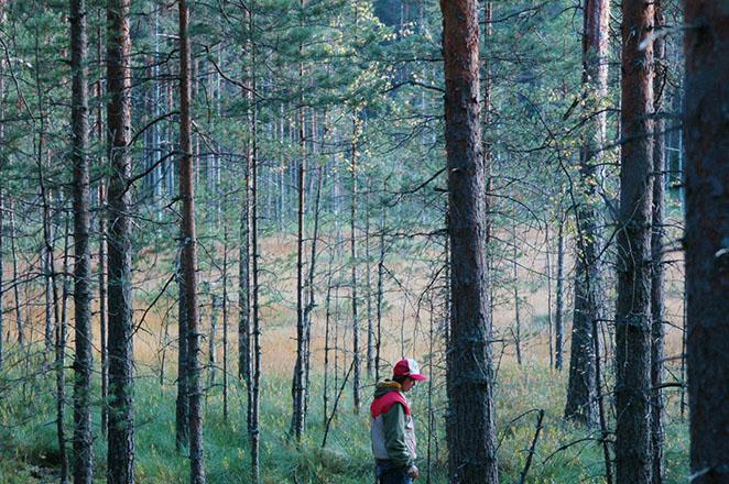 عکاسی طبیعت اثر Alexander Kuzmichev