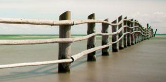 عکاسی با زمان نوردهی بالا اثر فلیکس اشمیت